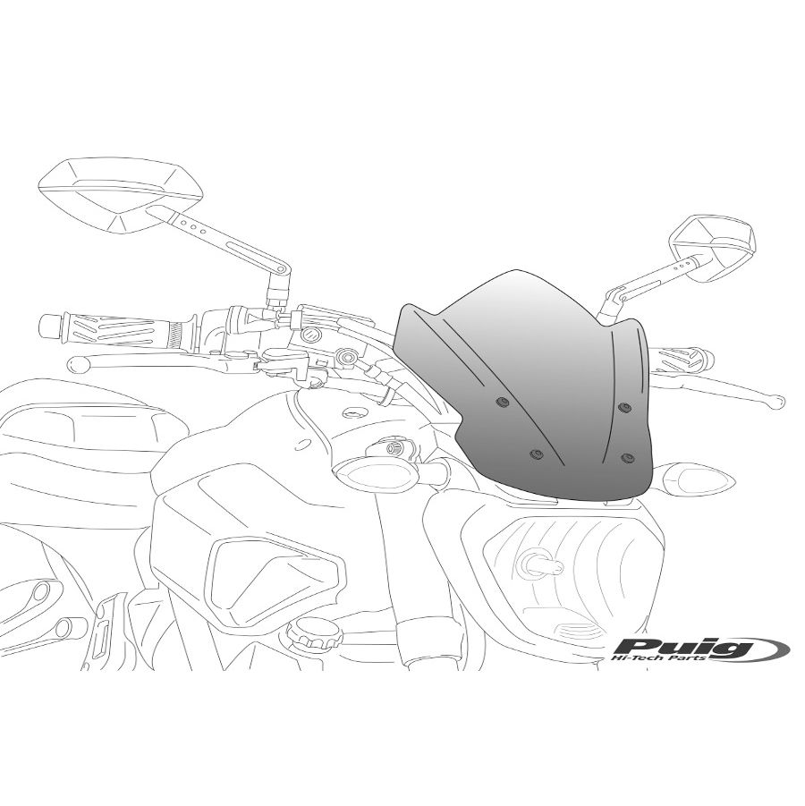 Parts :: Aprilia :: Shiver 750 / 900 :: Windscreens