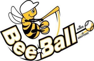 Meer weten over Beeball, Klik hier!