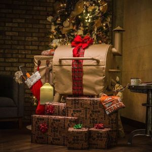Traeger Holiday Sale