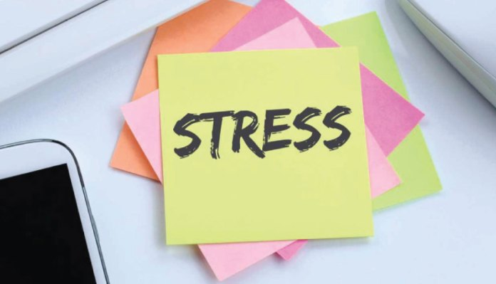 The Prevention Of Work Stress