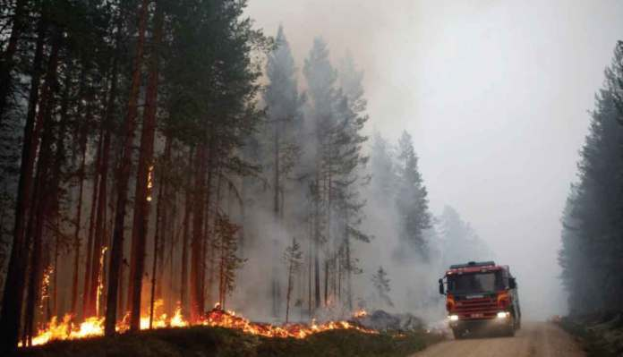Severe Forest Fires Raging Across Drought-Stricken Sweden