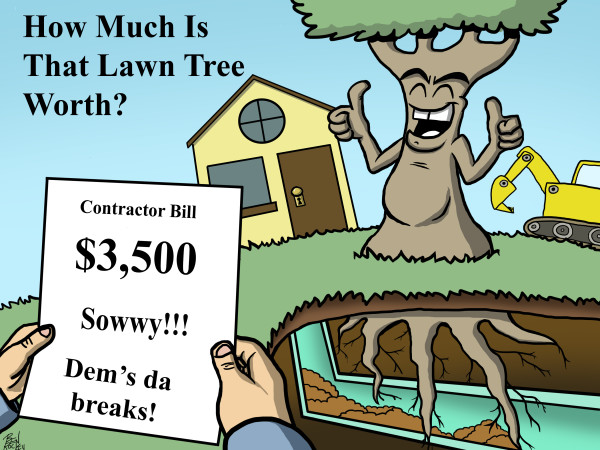 Comic showing tree root infiltration and consequences