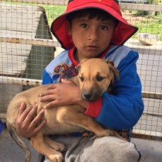 boy with puppy in Bolivia