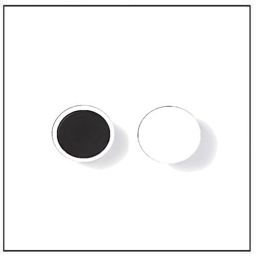 Round Ferrite Plastic Magnets White