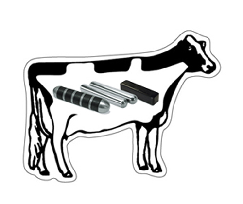 stainless steel ndfeb cow magnet magnets by hsmag Neodymium Magnet Field 1