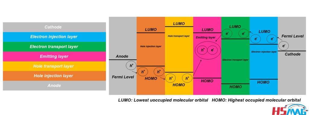Lighting Principle of Organic Light-Emitting Diode (OLED)