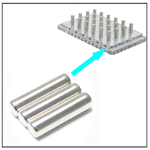 Cylinder Powerful NdFeB Magnets for Magnetic Bead Separation Racks
