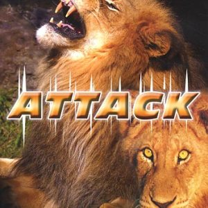 Attack/Lions (DVD)