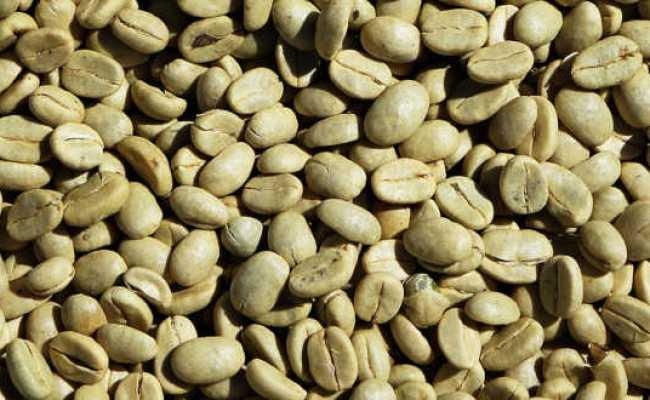 5 Beneficios Del Cafe Verde El Cafe Verde No Es Una Dokter Andalan