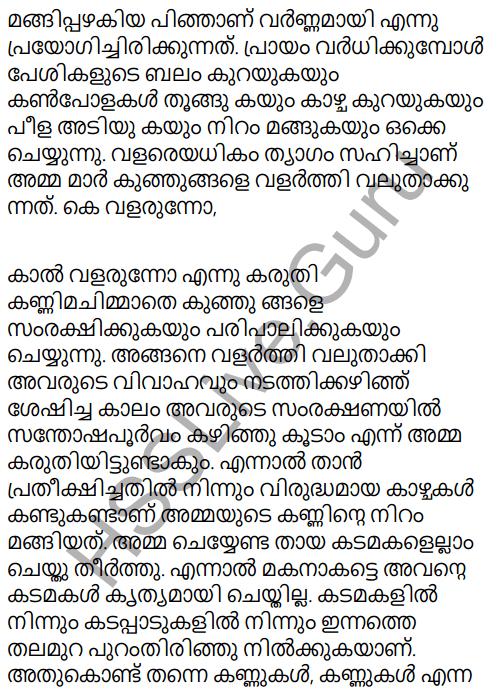 Adisthana Padavali Malayalam Standard 10 Solutions Unit 1 Chapter 3 Ammathottil 24