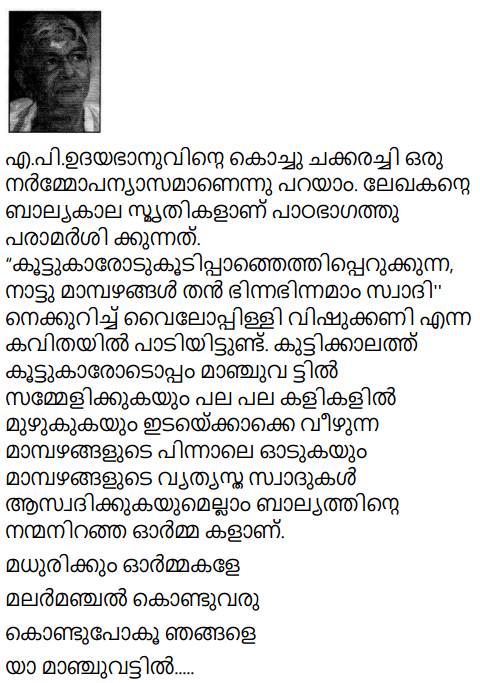 Adisthana Padavali Malayalam Standard 10 Solutions Unit 2 Chapter 1 Kochu Chakkarachi 28