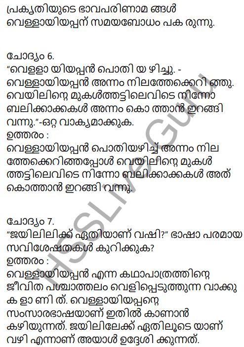 Kerala Padavali Malayalam Standard 10 Solutions Unit 2 Chapter 3 Katalttiratt 27