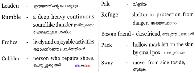 Kerala Syllabus 8th Standard English Solutions Unit 4 Chapter 4 A Day in the Country 19