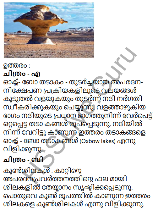 Kerala Syllabus 9th Standard Social Science Solutions Chapter 4 By the Hands of the Nature in Malayalam 22