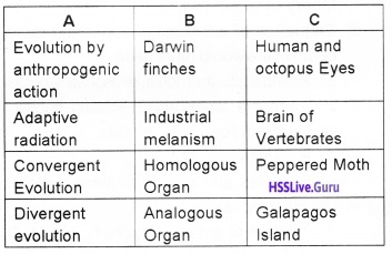Plus Two Zoology Chapter Wise Questions and Answers Chapter 5 Evolution - 9