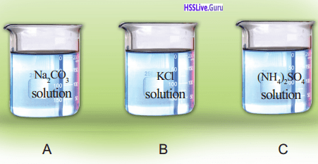 Kerala Syllabus 9th Standard Chemistry Solutions Chapter 5 Acids, Bases, Salts 19