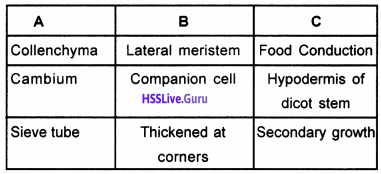Plus One Botany Chapter Wise Questions and Answers Chapter 4 Anatomy of Flowering Plants img13