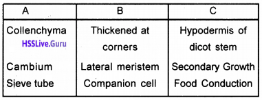 Plus One Botany Chapter Wise Questions and Answers Chapter 4 Anatomy of Flowering Plants img14
