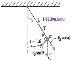 Plus One Physics Chapter Wise Questions and Answers Chapter 14 Oscillations - 29