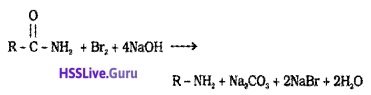 Plus Two Chemistry Notes Chapter 13 Amines 6