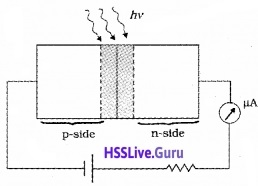 Plus Two Physics Notes Chapter 14 Semiconductor Electronics Materials, Devices and Simple Circuits - 18