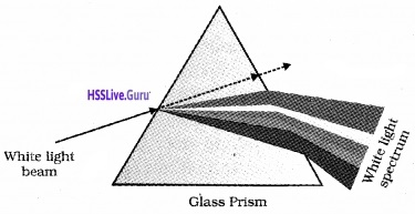 Plus Two Physics Notes Chapter 9 Ray Optics and Optical Instruments - 64