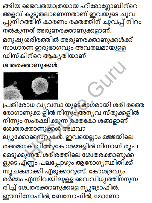 Kerala Syllabus 8th Standard Basic Science Solutions Chapter 2 Cell Clusters in Malayalam 10