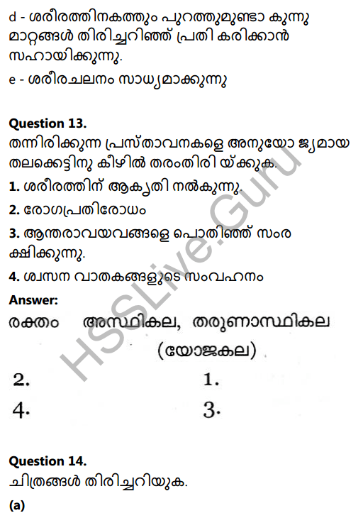 Kerala Syllabus 8th Standard Basic Science Solutions Chapter 2 Cell Clusters in Malayalam 23
