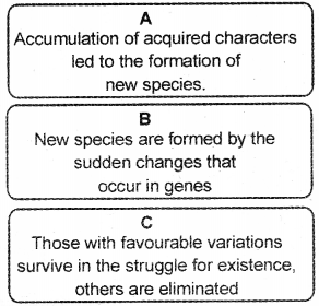 Kerala Syllabus 10th Standard Biology Solutions Chapter 8 The Paths Traversed by Life - 24