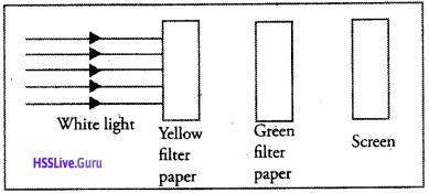 Kerala Syllabus 10th Standard Physics Solutions Chapter 6 Vision and the World of Colours image 31