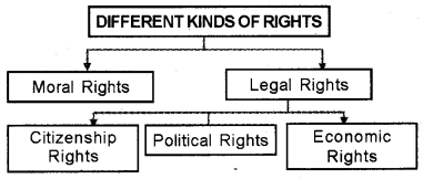 Plus One Political Science Chapter Wise Questions and Answers Chapter 5 Rights 3