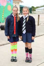 Socks (24)