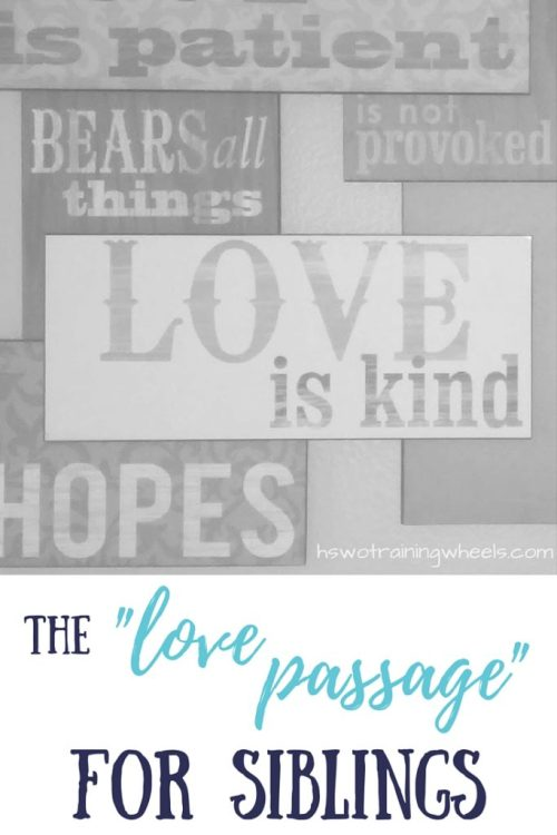 The Love Passage for Siblings - What 1 Corinthians 13 means for brothers and sisters