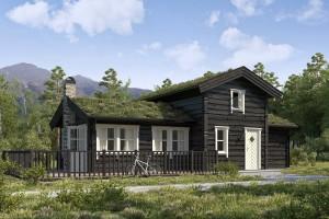 Vestlandshus 9