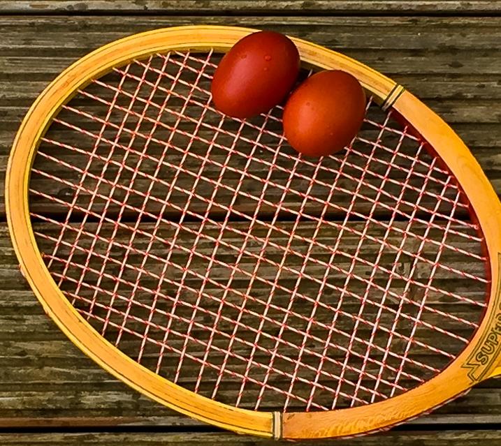 Leipzig Tennis
