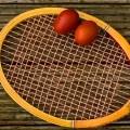 HTC Leipzig Tennis Südost