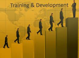 people climbing steps of development