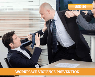 preventing violence in the workplace training - violence prevention online training - violence in the workplace training - workplace violence training certification - Online courses