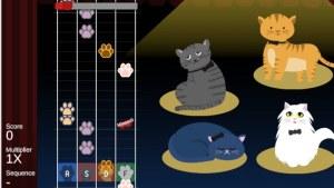 kitty pawpera