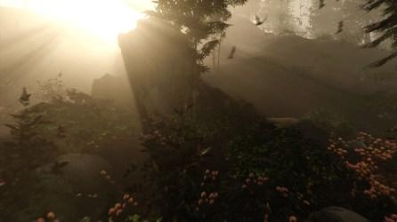 trailer de The Forest