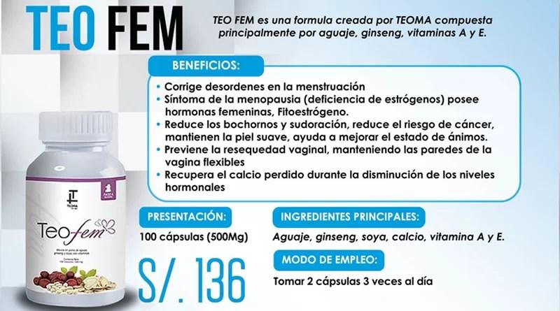 TeoFem by Teoma Ayacucho