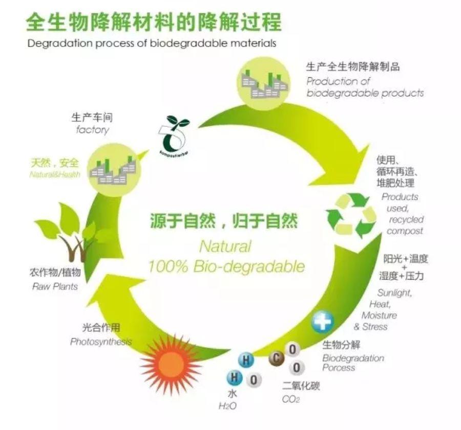 你買的可降解垃圾袋真的環保嗎?濕垃圾可以不破袋?(2)-國際環保在線