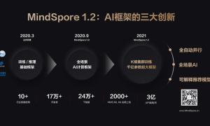 Huawei MindSpore 1.2
