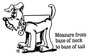 Designer Doggy Coats