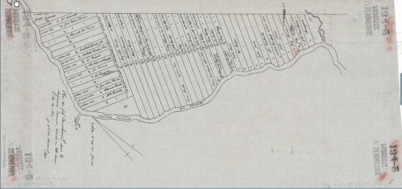 "Plan of the ""fief"" Bourchemin-East, in the Seignory of Barrow (St-Hughes), divided in lots during the summer of 1822."