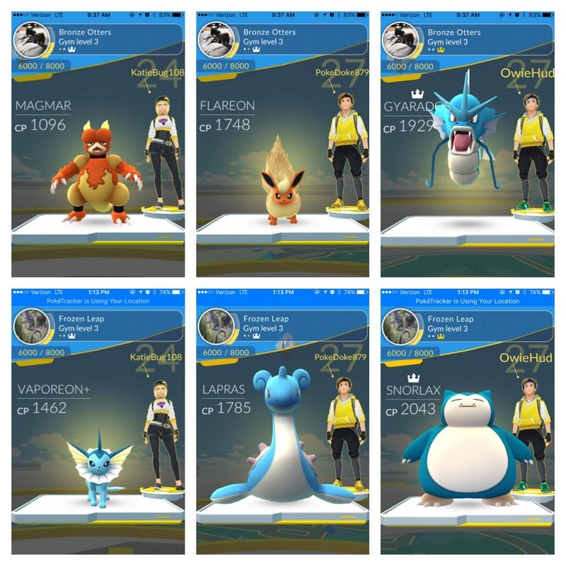Pokemon gyms