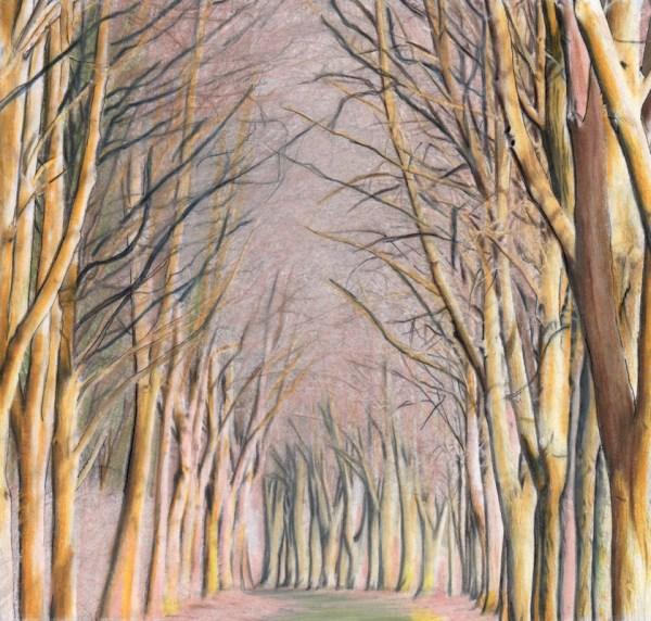 Beautiful Nature Grayscale Coloring Book Tree Landscape - Huelish
