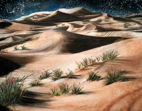 Beautiful Nature Grayscale Coloring Book Desert Landscape - Huelish