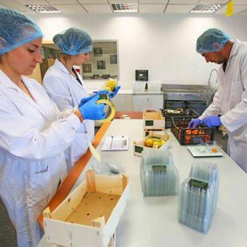 Desarrollan un innovador caviar cítrico, sin colorante, fresco y envasado