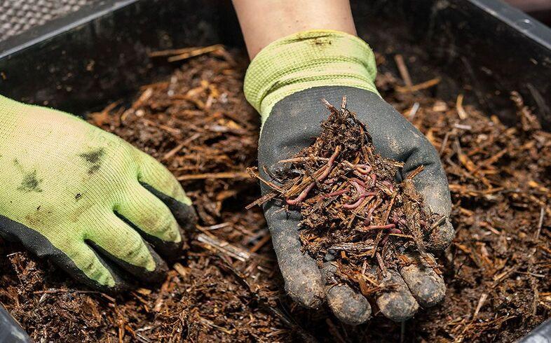 productos ecologicos para huerto